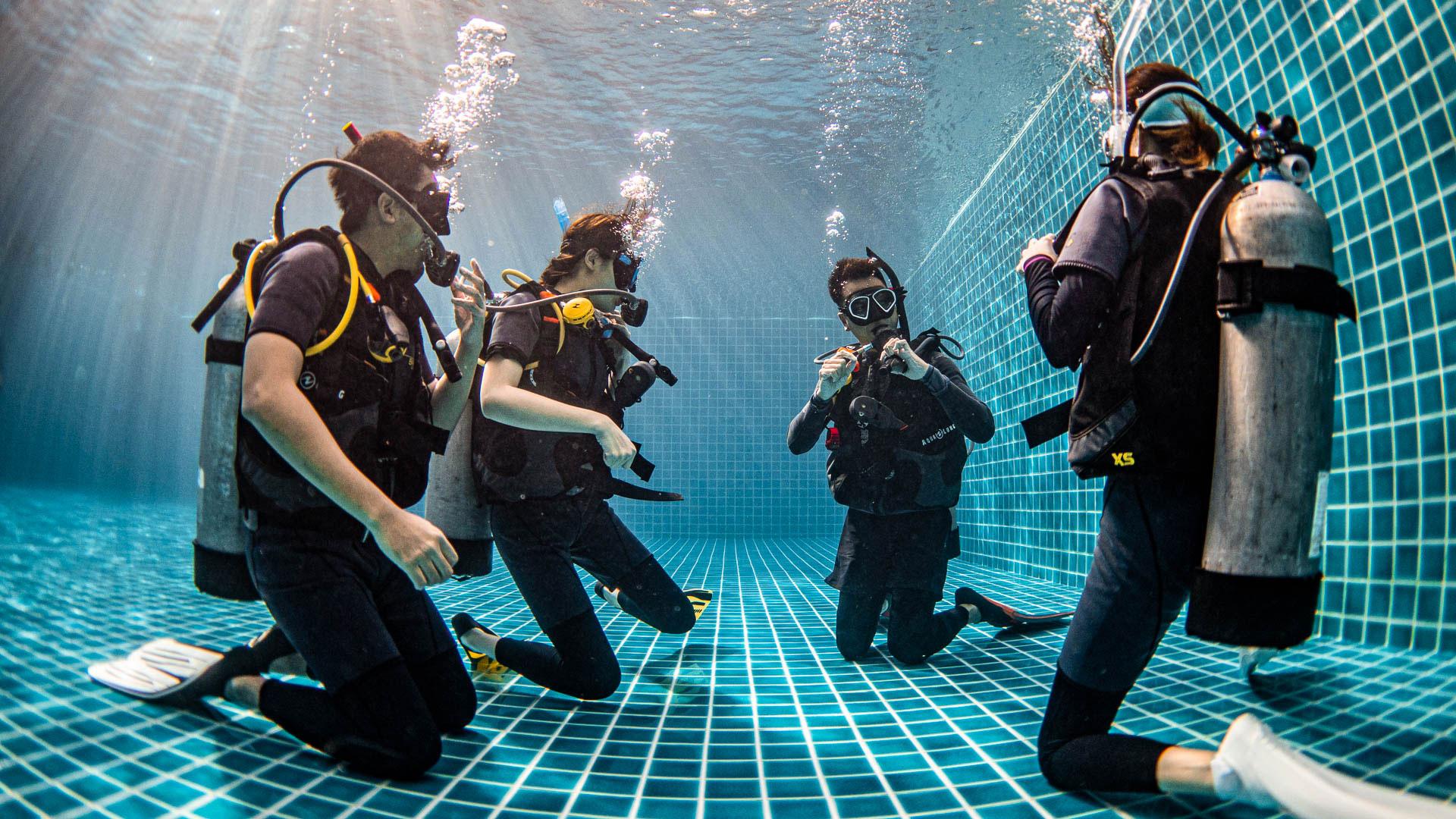 มาตรฐานด้านการดำน้ำ scuba diving
